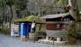 Tanuki, Sake barrel and the ever present vending machines at the entrance to the shrine.