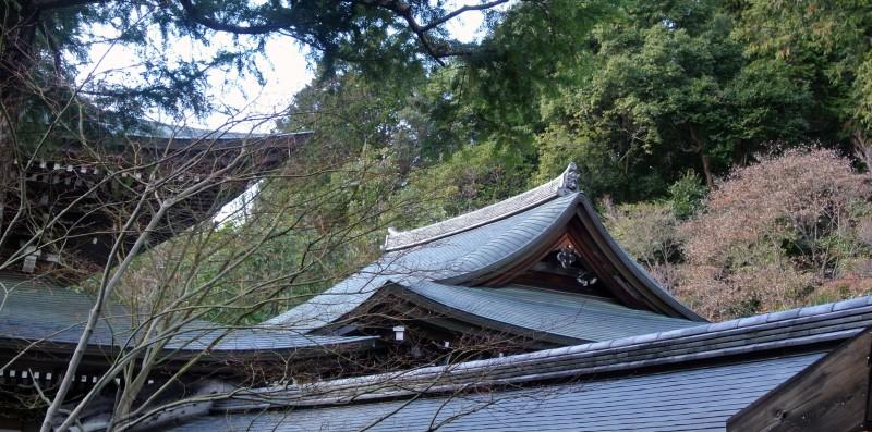 Rooftops Ryoan-ji Temple