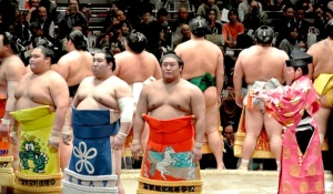 sumo#1