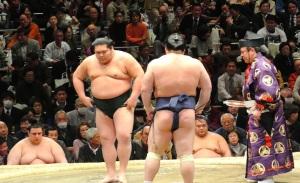 sumo#2