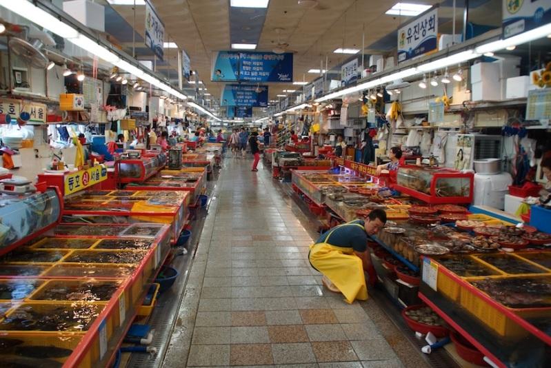 62fishmarket